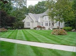 House, Lawn & Trees